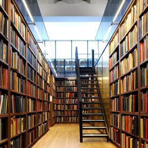 Библиотеки Елабуги