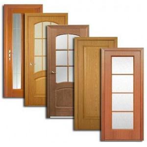 Двери, дверные блоки Елабуги